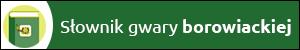 Słownik gwary borowiackiej, baner