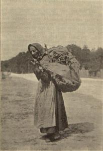 Kobieta z Borów zbierająca chrust, zdjęcie z początku XX w.