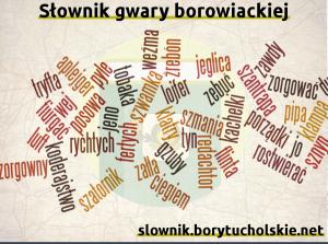 Słownik gwary borowiackiej