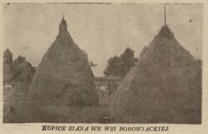 Kopce siana we wsi borowiackiej