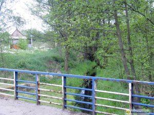 Rzeka Śliwiczka w Śliwicach