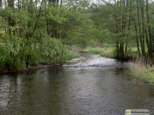 Rzeka Wda - na wysokości Czarnej Wody