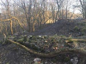 Ruiny Zamku w Gródku - fot. Adam Paluśkiewicz