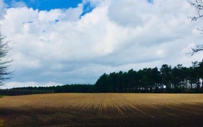 Czasy prehistoryczne – zarys historii gospodarczej powiatu tucholskiego