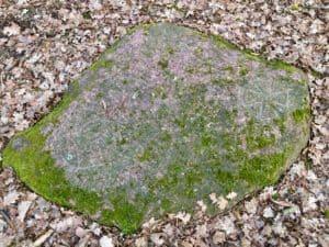 Tajemniczy Kamień - fot. Adam Paluśkiewicz