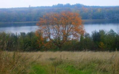 Przyroda w październiku